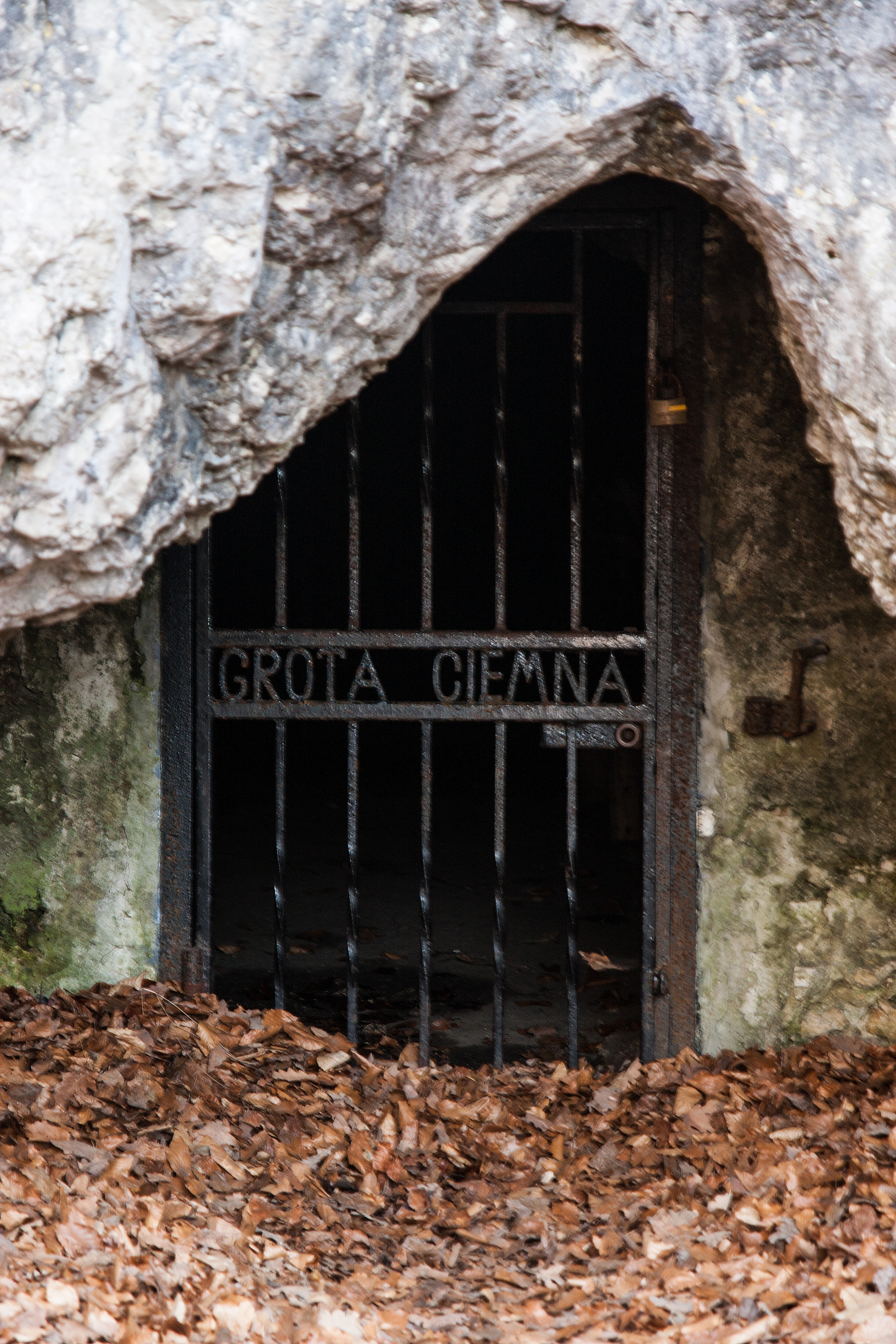 Wejście do Jaskini Ciemnej w Ojcowie