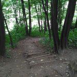 Wejście na szlak widokowy od Doliny Prądnika