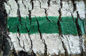 Zielony Szlak Widokowy - Ojców