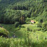 Lato w Ojcowie widok ze szlaku Zielonego