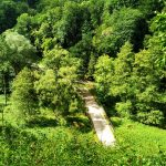Szlak Zielony widok na drogę w Ojcowie