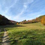 Dolina Sąspowska Jesień