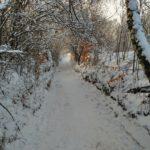 Ścieżka doOjcowa Zimą